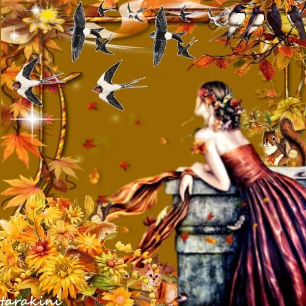 regard d automne ...