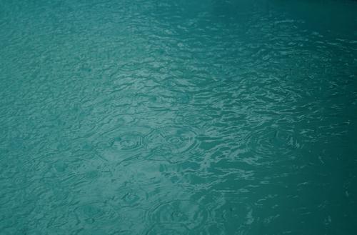 Photos - #1 : Rainy Day Edition