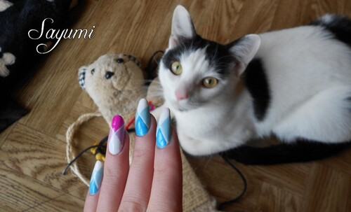Nail Art Losanges