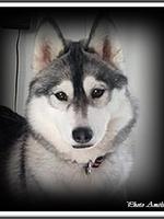 Jalya (11,5 mois)