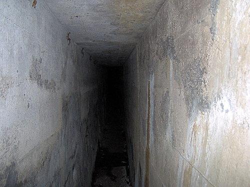 le donon,31-10-2007 019