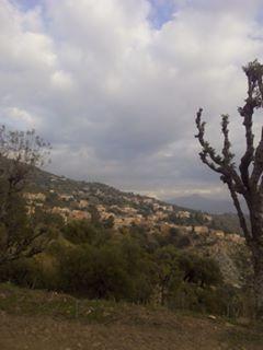 L'image contient peut-être: nuage, ciel, arbre, plante, montagne, plein air et nature