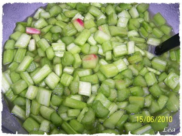 100 8107 cotes rhubarbe