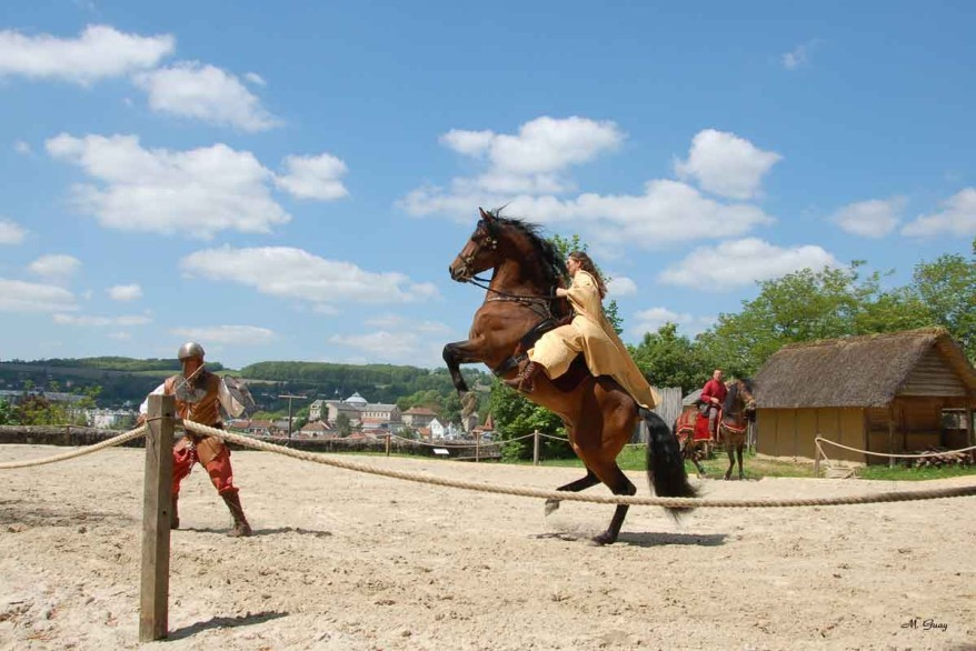 cheval-ennemi-9060.jpg