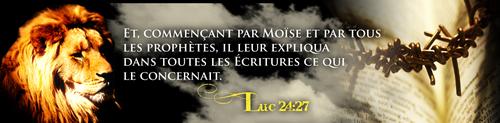 Mais où sont donc passés les élus d'Élohim, le peuple saint ?