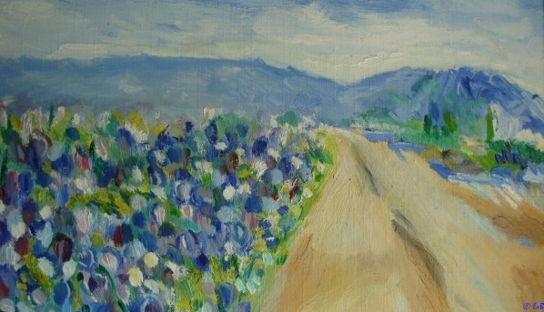 chemin aux iris