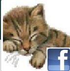avatar-fb.jpg