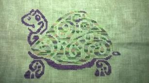 Une jolie tortue