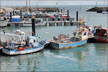 Photos du port de l'Herbaudière (île de Noirmoutier)