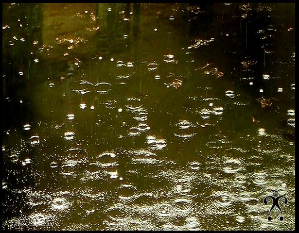 Sourire sous la pluie