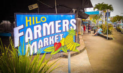 books ocean beach market fresh fruits