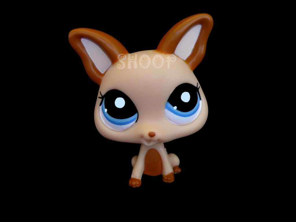 LPS 2048