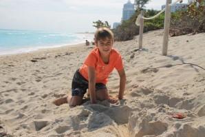 Miami-beach 2449