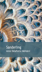Un nouveau roman d'Anne Delaflotte-Mehdevi, 1ère lauréate