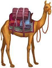 Lecture CE2: Comment le chameau acquis sa bosse