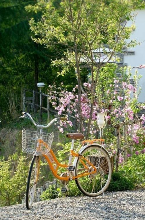 Vélos fleuris(2)