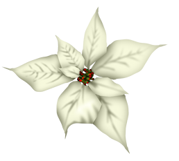 Scrap Blanc