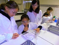 Atelier sciences: masse et volume