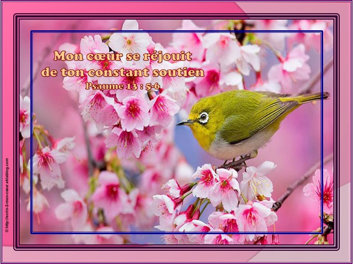Mon coeur se réjouit de ton constant soutien - Psaumes 13 : 5-6