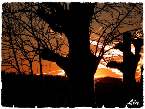 DSCF7791-coucher-de-soleil.jpg