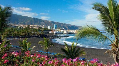Un bonjour de Puerto de La cruz ...