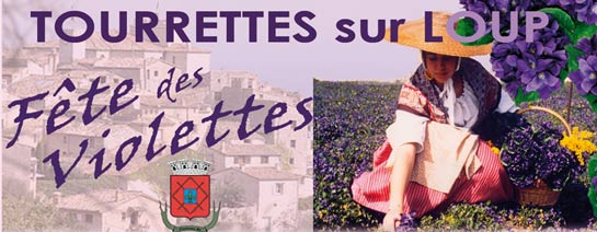 """Résultat de recherche d'images pour """"Les cultures de violettes a Tourrettes"""""""