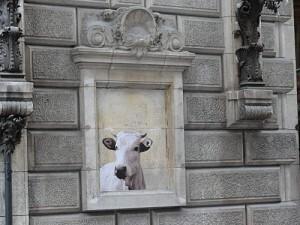 Vache-a-Paris-300x225.jpg