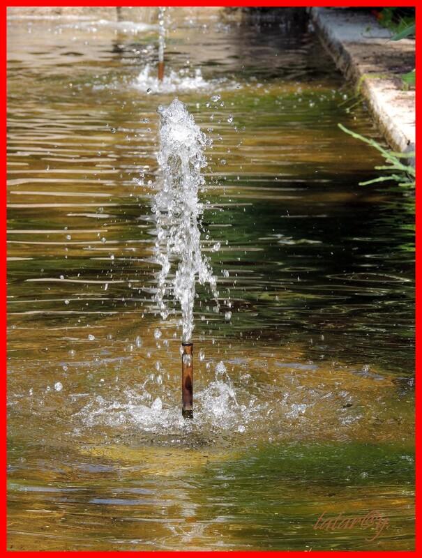 Jet d'eau ....