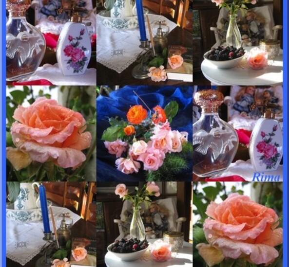 Roses_et_parfum