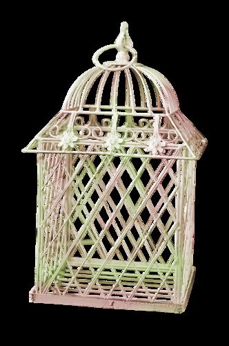 Cages à Oiseaux Série 3