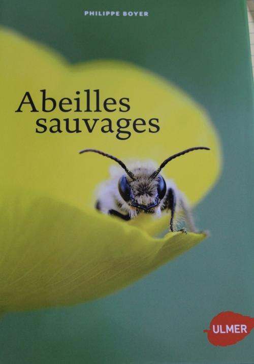Livre sur les abeilles sauvages