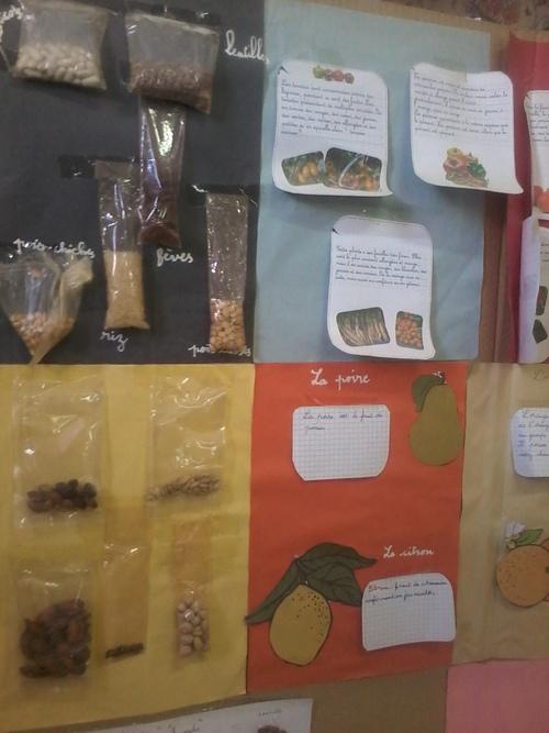 Des graines,des cartes d'identité de fruits et légumes..