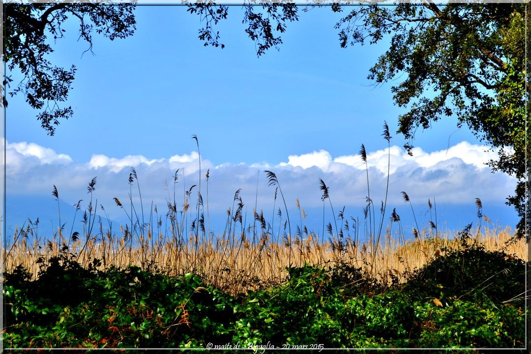 Nuage sur Biguglia - Corse