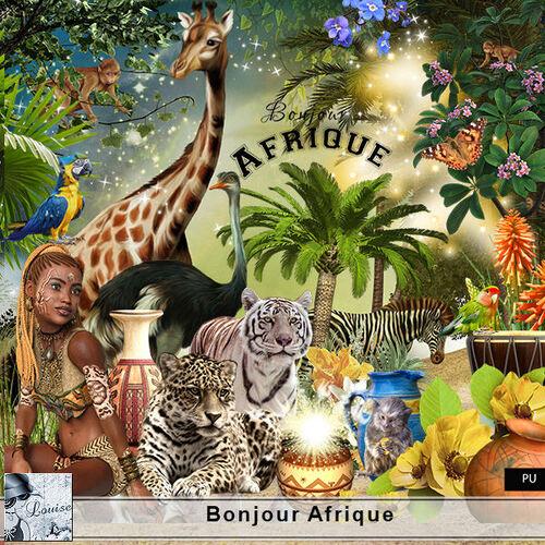 Bonjour Afrique