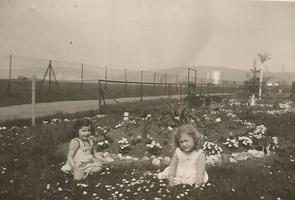 Les zizines en Avril 1952