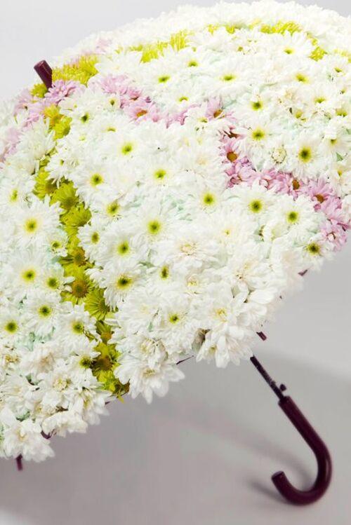 Ombrelles fleuries