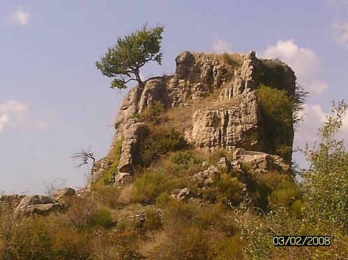 SUNP0186
