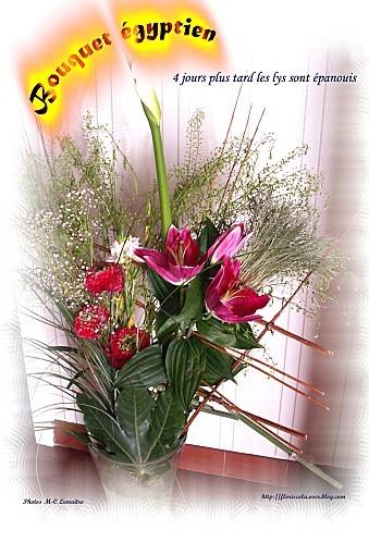 fleurs -panouies