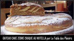 GÂTEAU CAKE ZÉBRÉ CRAQUE AU NUTELLA
