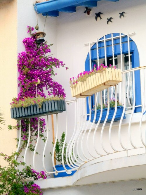 Des fleurs en façade
