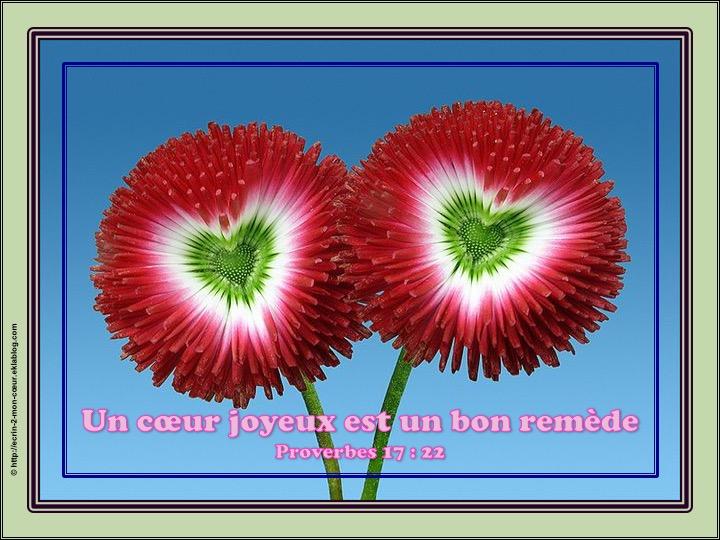 Un coeur joyeux est un bon remède - Proverbes 17 : 22