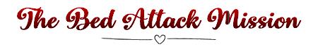 Chapitre spécial 1: The Bed Attack Mission - 2ème partie