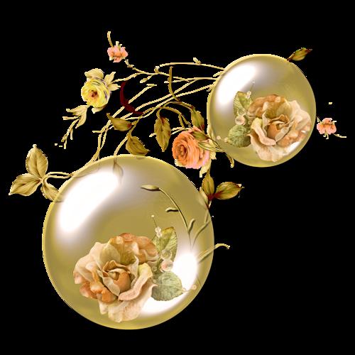 Ornements Floraux Série 15