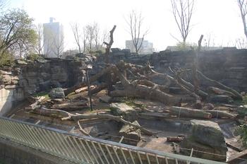 zoo cologne d50 2012 023