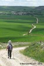 Mercredi 25 mai 2016 : Burgos - Hornillos del Camino