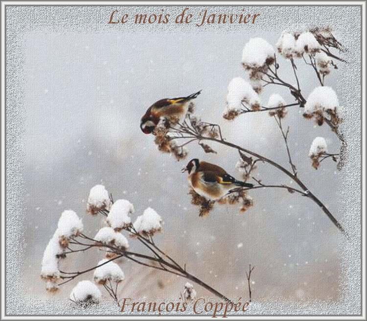 """"""" Mois de Janvier """" poème de François Coppée"""