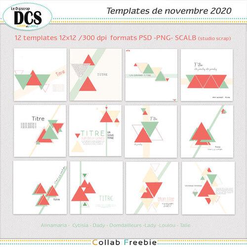 Template triangles DCS Novembre 2020