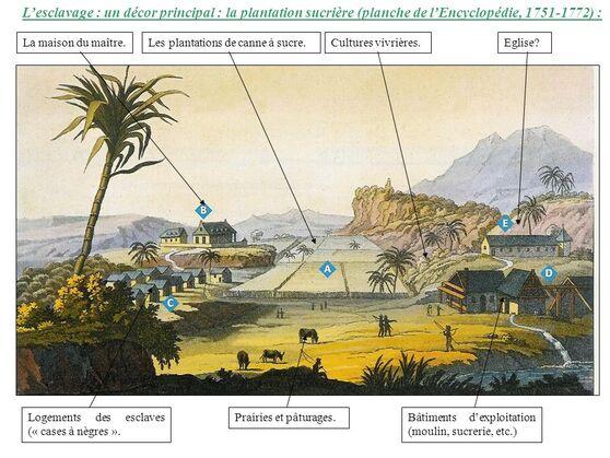 """Résultat de recherche d'images pour """"plantation sucriere 17eme siecle"""""""