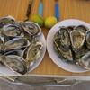 429 Dakhla Repas huîtres