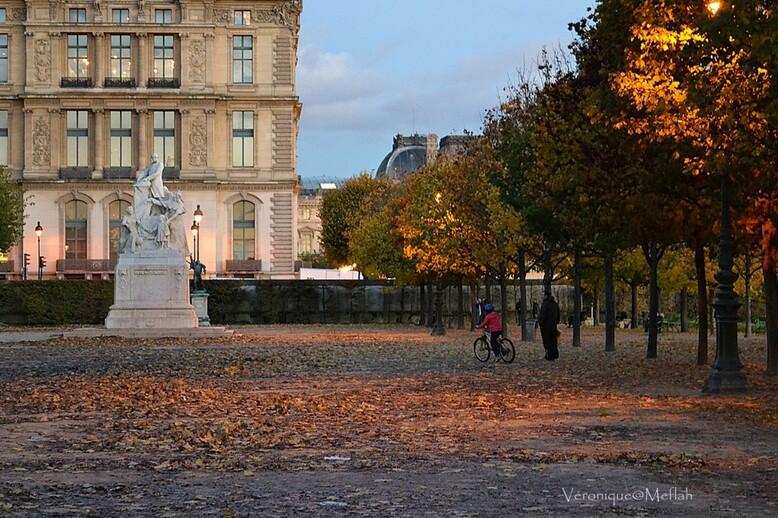 Un automne au Jardin des Tuileries